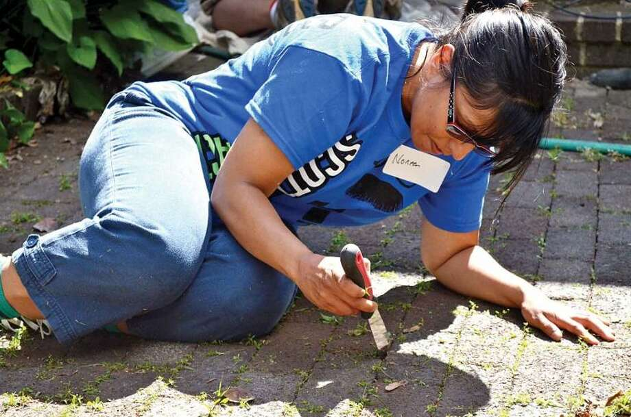 Hour photo / Liana Sonenclar Noreen Sait, a Deloitte employee, clears out weeds Friday as part of the 15th anniversary of IMPACT Day.