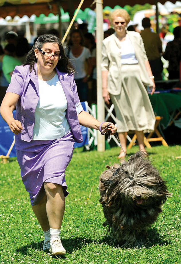 Hour photo / Erik Trautmann Irene Senedak shows her Bergamasco sheep dog, Gemma, during The Greenwich Kennel Club All-Breed Dog Show, Obedience & Rally Trial at Taylor Farm Saturday,