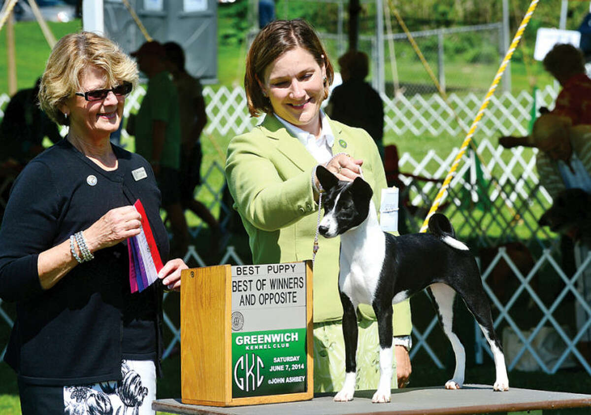 Hour photo / Erik Trautmann Norwalk native Kim Brown and her basenji, Chanel, are awared Best Puppy, Best Opposite Sex and Best of Wiiners by judge Betty Ann Stenmark during The Greenwich Kennel Club All-Breed Dog Show, Obedience & Rally Trial at Taylor Farm Saturday,