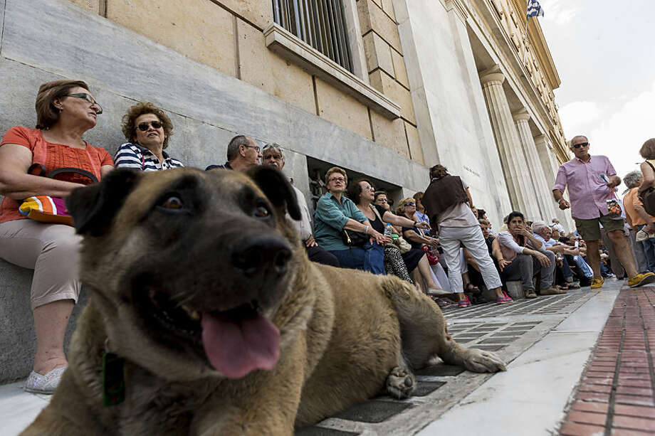 A dog sits in front of elderly people who are demanding their entire pensions during a protest outside Bank of Greece in Athens, Wednesday, July 1, 2015. Crowds of anxious elderly Greeks thronged banks for hours from before dawn Wednesday, struggling to be allowed to withdraw their maximum of 120 euros ($134) for the week, after Greece reopened some banks to help pensioners who don't have bank cards. (AP Photo/Daniel Ochoa de Olza)