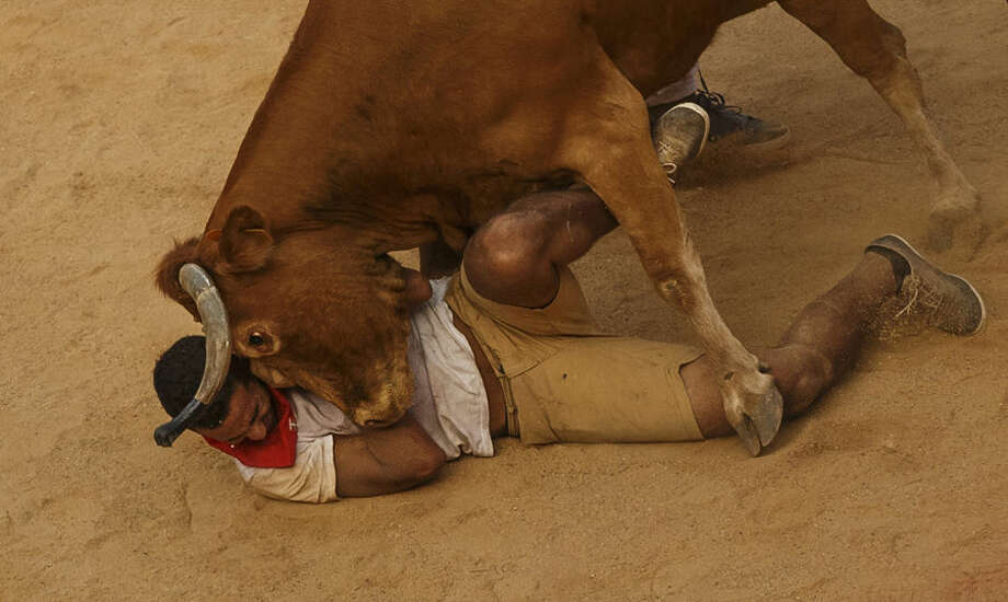 A reveler is tossed by a cow during a celebration held at the bullring after the running of the bulls of the San Fermin festival in Pamplona, Spain, Tuesday, July 7, 2015. Revelers from around the world turned out here to kick off the festival with a messy party in the Pamplona town square, one day before the first of eight days of the running of the bulls. (AP Photo/Daniel Ochoa de Olza)