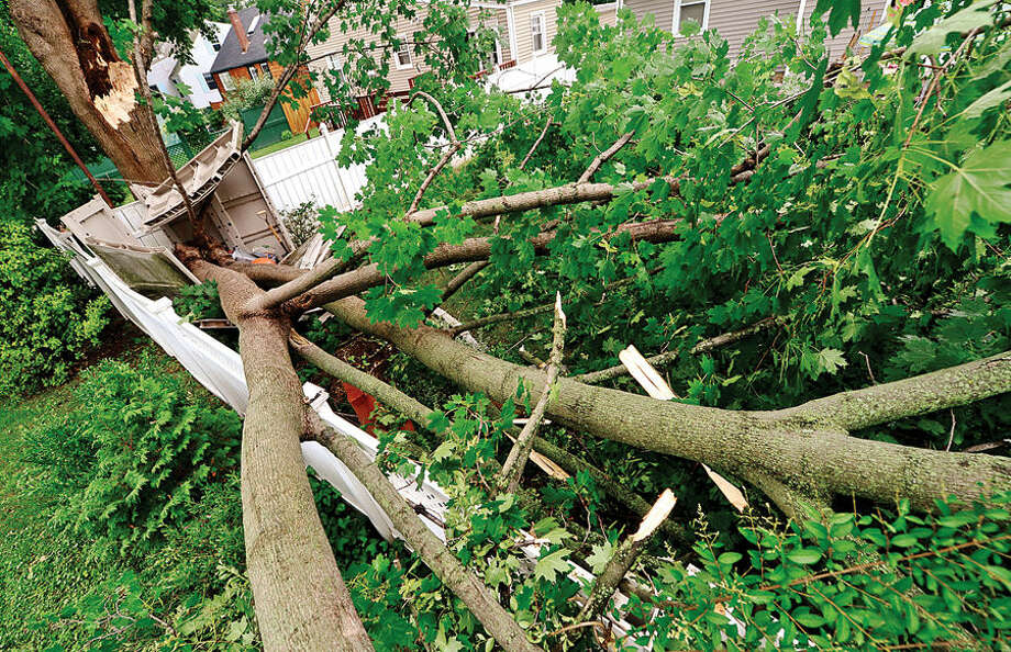 Hour photo / Erik Trautmann A tre branch fell over night Wednesday damaging a fence and shed at 35 Emerson St in Norwalk.