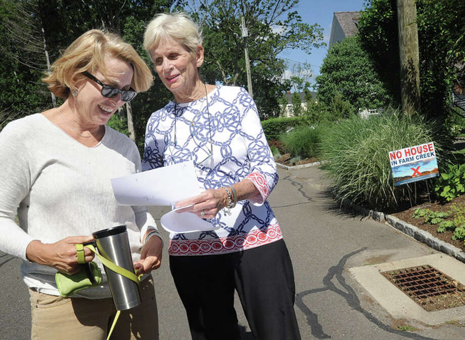 Linda Scull gives information to fellow resident Sarah Balsley Sunday supporting the action to have no house on Farm Creek in Rowayton. Hour photo/Matthew Vinci