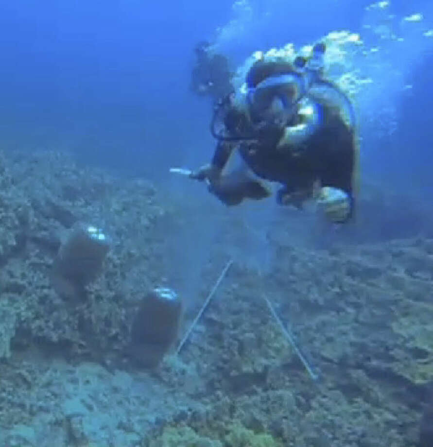 File-This undated file video frame grab shows a scuba diver swimming toward activist Rene Umberger moments before ripping her air supply regulator out of her mouth near Kona, Hawaii, from a video released by Umberger. The underwater scuffle is highlighting a long-running dispute pitting environmentalists who want to shut down the industry in Hawaii and collectors who gather aquarium fish and sell them for a living. (AP Photo/Rene Umberger, File)