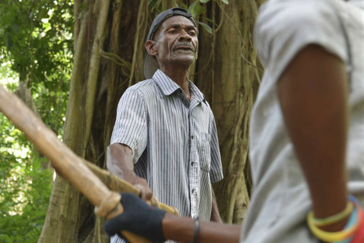 In this July 2, 2014, photo, Haitian machete fencing expert Alfred Avril, left, instructs a student in the art of combat using faux-machetes carved out of wood from an orange tree, just outside Jacmel, Haiti. The barefoot man and his son, Roland Avril, are farmers by trade in southern Haiti. Their passion, however, is machete fencing, an obscure martial art with roots in the Caribbean country?'s history of slavery and rebellion. (AP Photo/David McFadden)