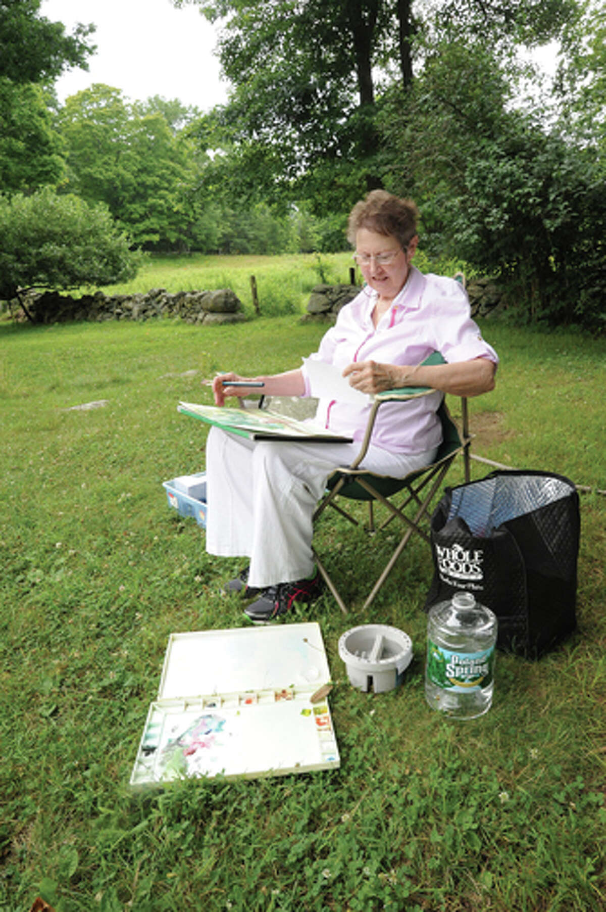Rita Mochacsi works on her Watercolor Sunday at Weir Farm in Wilton as part of a workshop led by artist Dimitri Wright.