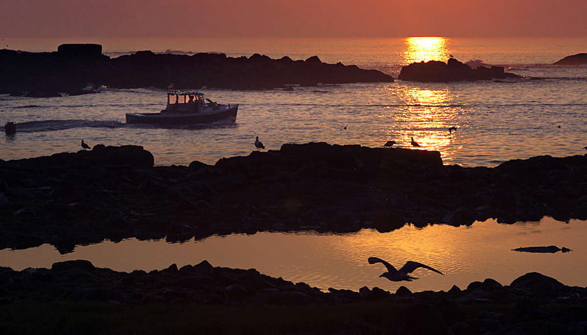 A lobsterman motors through a channel between islands as he leaves Cape Porpoise Harbor at sunrise Monday, Aug. 17, 2015, in Kennebunkport, Maine. (AP Photo/Robert F. Bukaty)
