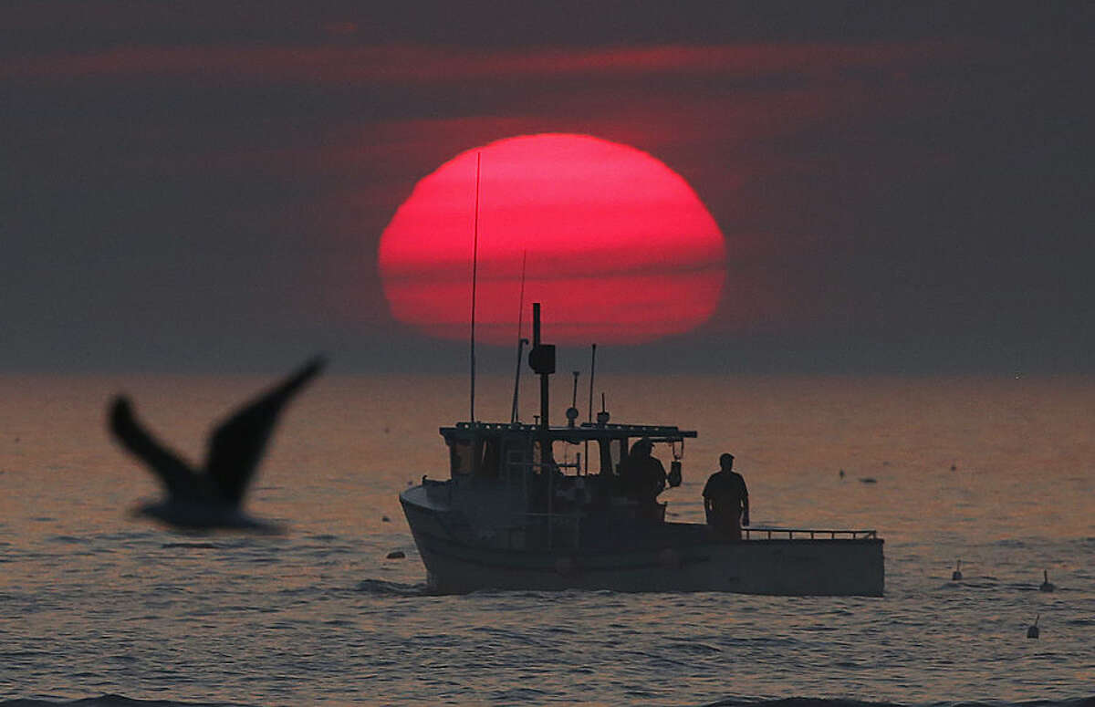 In this Monday, Aug. 17, 2015, photo, a lobster boat heads out to sea at sunrise, off Kennebunkport, Maine. Fishermen in northern New England have been catching record numbers of lobsters, but south of Cape Cod, the lobster population has plummeted to the lowest levels ever seen, in a northward shift that scientists attribute in large part to the warming of the ocean. Maine fishermen have landed more than 100 million pounds of lobster for four years in a row, by far the highest four-year haul in the state's history. (AP Photo/Robert F. Bukaty)