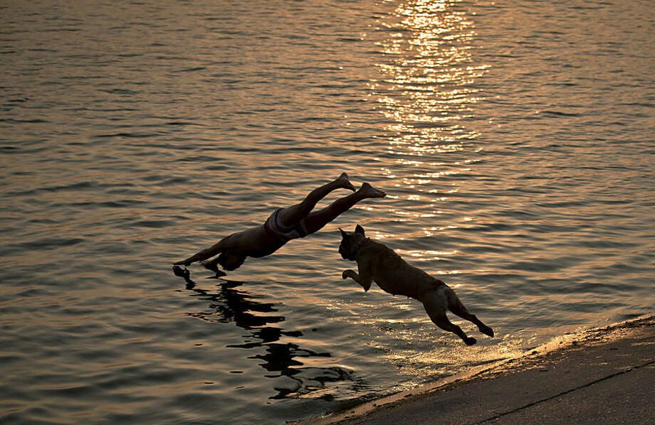 Aisha the dog follows her owner as he jumps into a lake at sunset in Bucharest, Romania, Tuesday, Aug. 12, 2014. Romania's weather authority issued a heat wave warning for the coming days with temperatures expected to exceed 37 degrees Celsius (98.6 degrees Fahrenheit) in many regions of the country.(AP Photo/Vadim Ghirda)