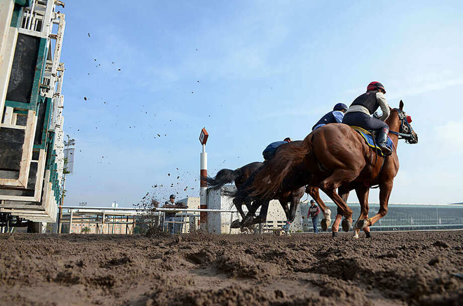 In this July 25, 2014 photo, Sofia Barandela, 28, right, takes the horse she is working out for a practice run from the gate at the Hippodrome of the Americas in Mexico City. Barandela, who has been working as a veterinarian and galloper at the track for two years, recently filed her paperwork to be a apprentice jockey and should begin racing competitively soon. (AP Photo/Sean Havey)