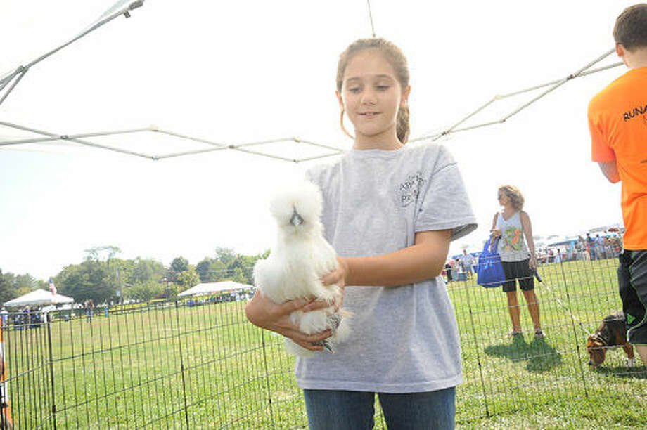 Sarah Boltippa 10, with a silky chicken in the Runabout Farm tent one of the many attractions at the Live Green Connecticut event Saturday. Hour photo/Matthew Vinci