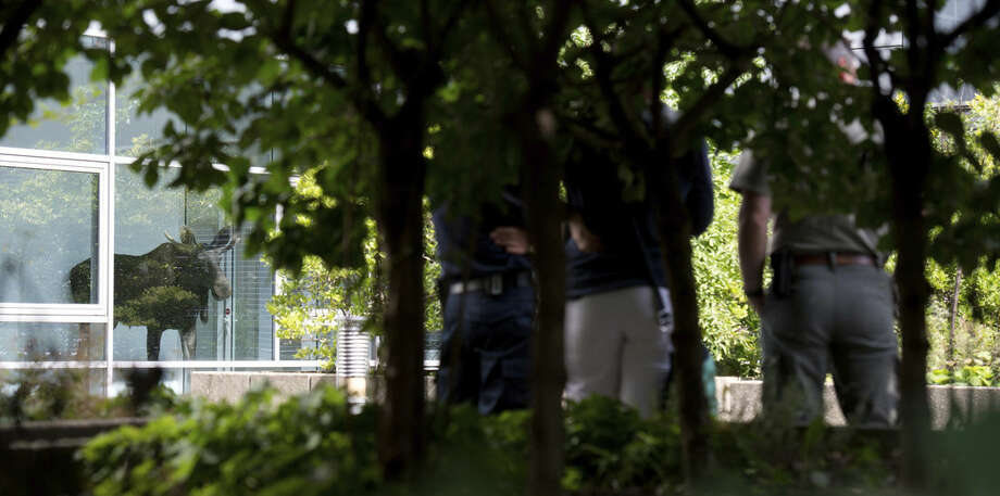 Police and a zoo employee watch a  young moose in an administration building of Siemens in Dresden, Germany, Monday Aug. 25, 2014. Police are trying to capture a moose on the loose in the eastern German city of Dresden. A spokesman for Dresden police says the young bull walked into the offices of German industrial giant Siemens on Monday and got stuck behind a glass wall. Marko Laske says officers and wildlife are trying to shoo the moose into a container so he can be taken to the local zoo. Moose are rare in Germany and the animal is likely to have come from neighboring Poland. (AP Photo/dpa,Arno Burgi)
