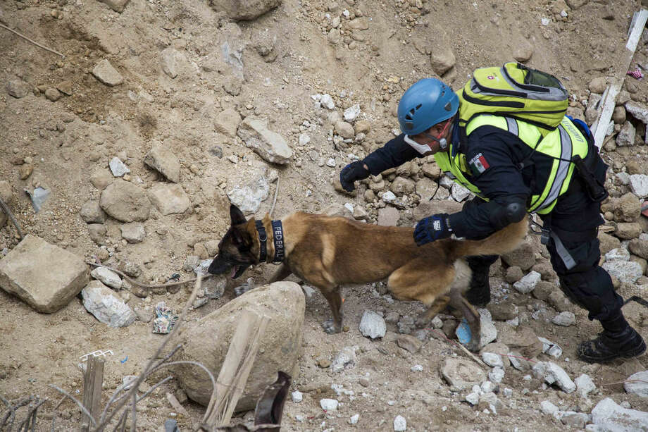 A member of a Mexican rescue team and his dog searche victims at the site of a mudslide in Cambray, a neighborhood in the suburb of Santa Catarina Pinula, on the outskirts of Guatemala City, Sunday, Oct. 4, 2015. Hope faded Sunday for finding any survivors of a mudslide that killed at least 87 people as authorities said that hundreds more may still be missing. (AP Photo/Luis Soto)