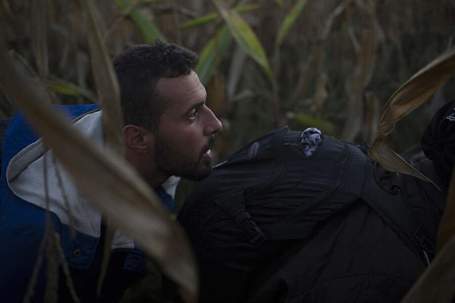 Once across the border, the Syrian migrants ducked left off the railroad tracks into a nearby cornfield near the Hungarian village of Roszke. Mohammed al-Haj crouched in the tall stalks in this photo taken Saturday, Sept. 12, 2015. Their plan was to slip through the field to a road and a gas station, where they could find a taxi to take them along their way. The path would then be open to Austria and, after, to Germany. Silently, Mohammed led the others through the corn stalks, signaling them with hand gestures. Walk. Stop. Down. He flattened onto his belly, and the others did the same. They could see the road and the gas station. They made their run for it. (AP Photo/Santi Palacios)