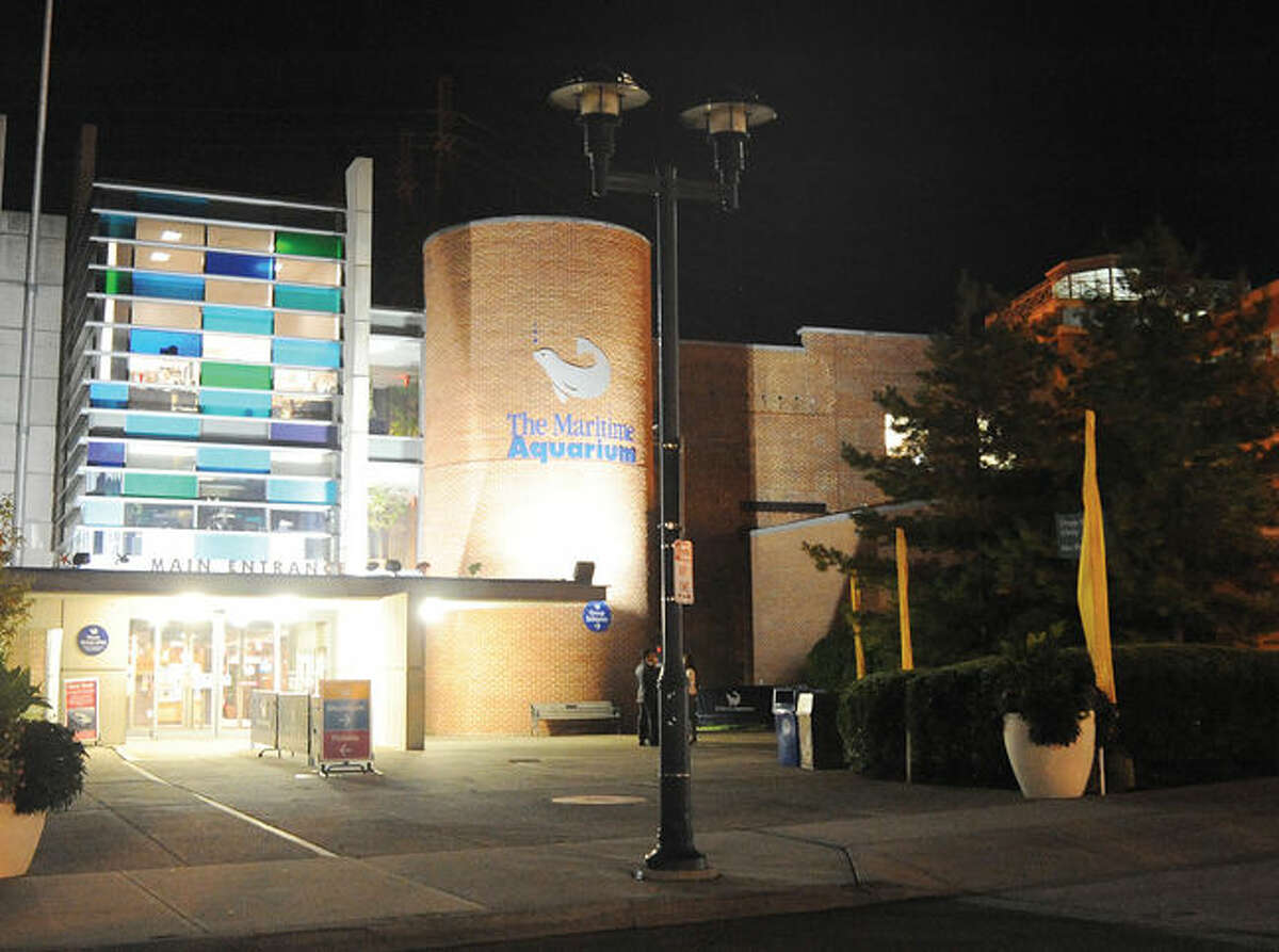 Some light posts in the area in front of the Maritime Aquarium in Norwalk have burned out lights. Hour photo/Matthew vinci