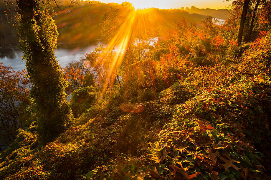 The sun streaks through the fall foliage at sunrise along the Potomac River in Arlington, Va., Wednesday, Nov. 4, 2015 on a warm fall day in the nation's Capitol area. (AP Photo/J. David Ake)