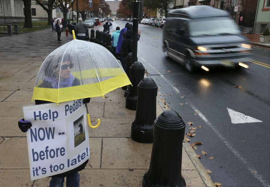 Janine Motta, of Manalapan, N.J., holds a sign as she stands in the rain as she and other animal activists in Trenton, N.J., on Tuesday, Nov. 10, 2015 renewed their calls for state officials to help ensure the welfare of a wild bear seen in videos walking upright. (AP Photo/Mel Evans)
