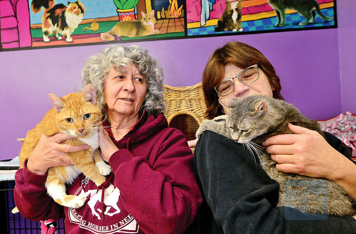 Volunteer Rachelle Cinque and Animals in Distress President Katherine Reid with, Monica and Mary, the late Father McKenna's cats who have come back to the shelter in Wilton after his suicide.