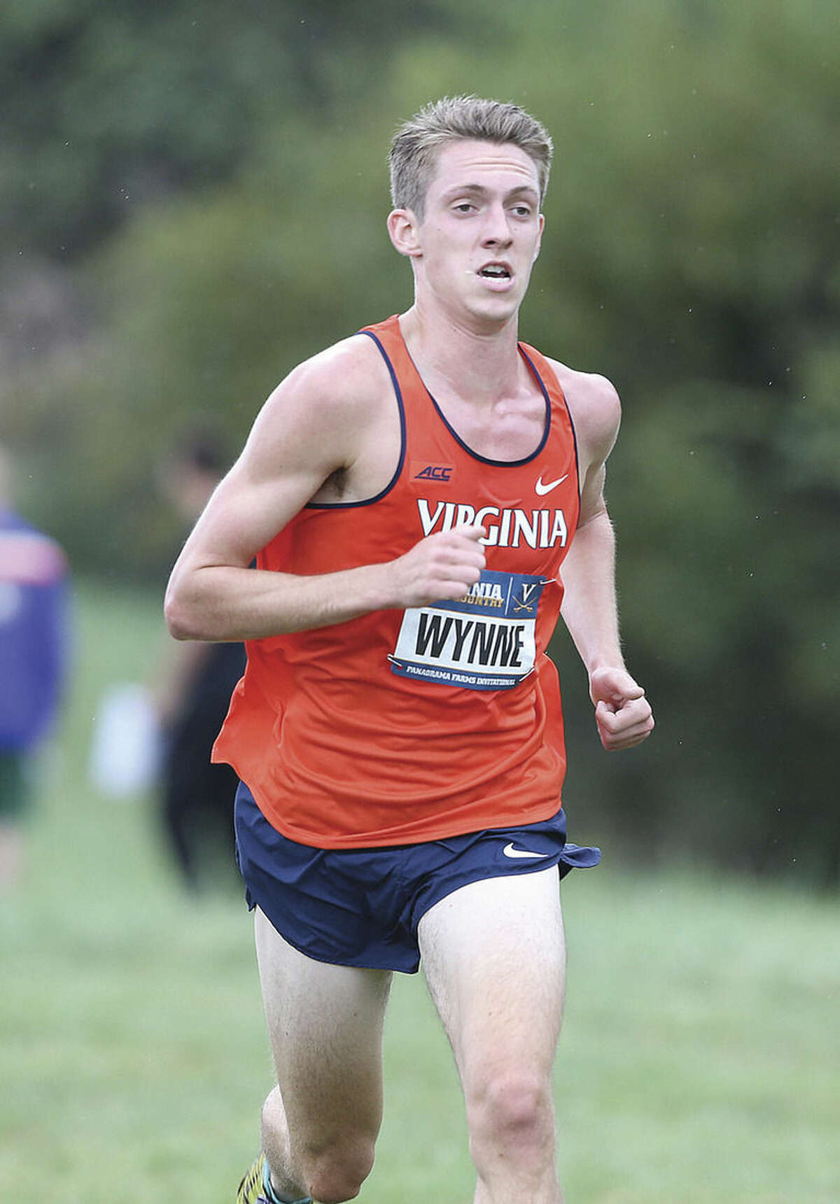 Photo courtesy of UVA Media Relations Westport resident Henry Wynne, a former star runner at Staples High School, is leading the Cavaliers into this Saturady's NCAA Division 1 championship meet.