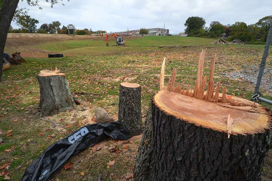 Hour Photo/Alex von Kleydorff Trees have been cut down ton the lower field as improvements are made along with lighting at Nathan Hale school