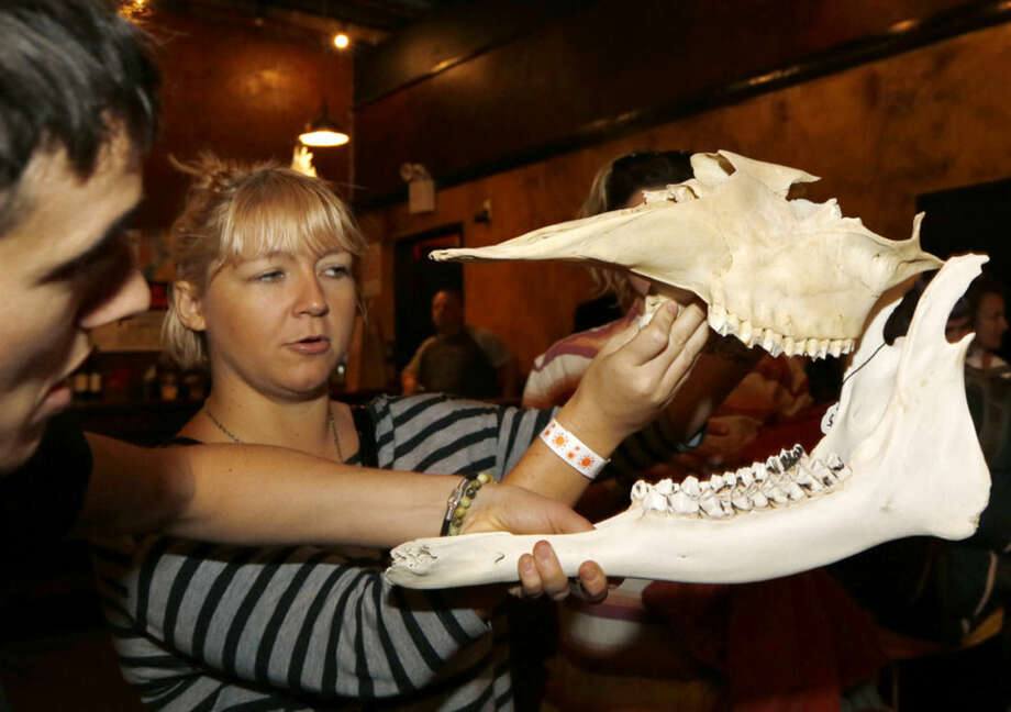 Nina Smith and owner Wilder Duncan, left, survey pieces of a Maine moose jaw, Sunday, Dec. 13, 2015, at the Morbid Anatomy Museum Holiday Flea Market in the Brooklyn borough of New York. As the holiday season gets into full swing, shoppers have been flocking to a Brooklyn flea market for gifts in a category all their own. About a dozen vendors displayed their horrific wares Sunday at the holiday market. People waited in long lines to get in. (AP Photo/Kathy Willens)
