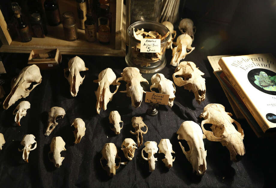 Tiny animal skulls on sale for $15 and $25 each and a book on English witchcraft, far right, are displayed, Sunday, Dec. 13, 2015, at the Morbid Anatomy Museum Holiday Flea Market, offering gifts both frightful and festive in the Brooklyn borough of New York. (AP Photo/Kathy Willens)