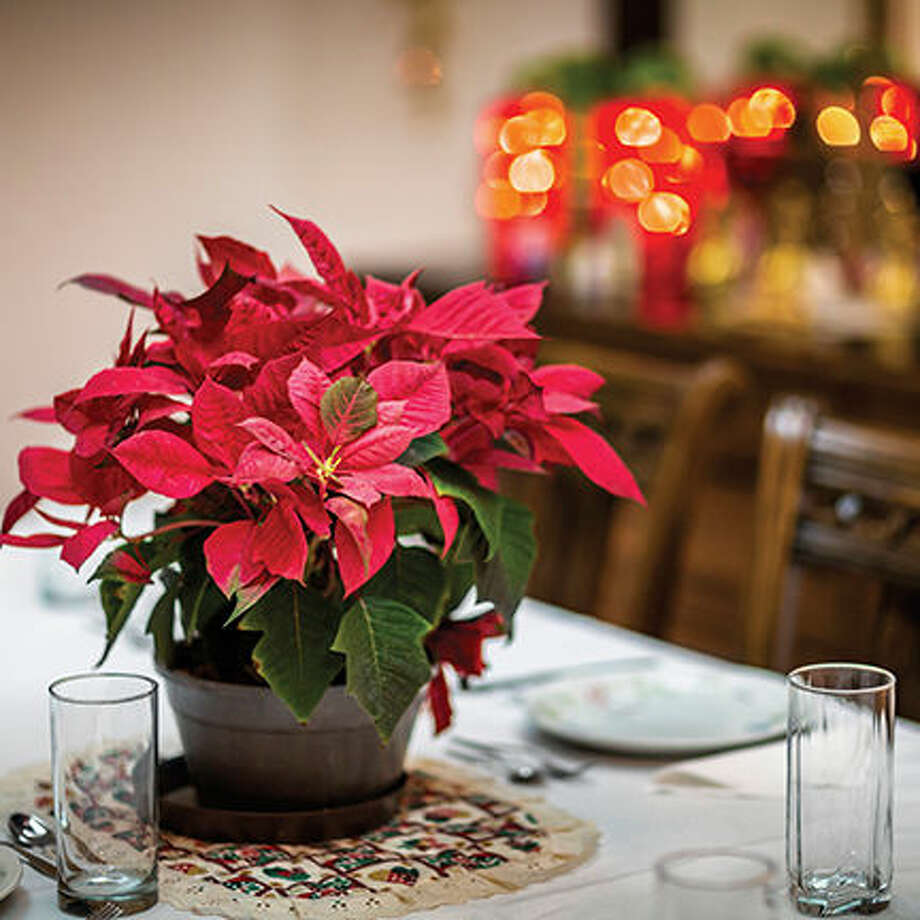 Get More Out of Holiday Entertaining this Season