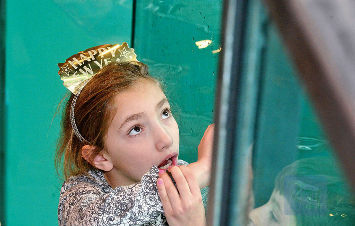 Hour photo / Erik Trautmann Visitors to the Maritime Aquarium includie Aubrie Miller, 7, watch as Tillie the Harbor Seal touches a ball as part of the Aquarium's special countdown and ball drop celebration, Noon Year's Eve, during the regularly scheduled noon feeding Thursday.