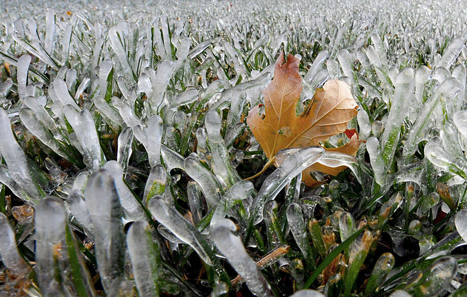 A maple leaf is lodged amidst blades of grass that are encased in ice Wednesday afternoon Nov. 12, 2014, in Salina Kan. (AP Photo/Salina Journal, Tom Dorsey)