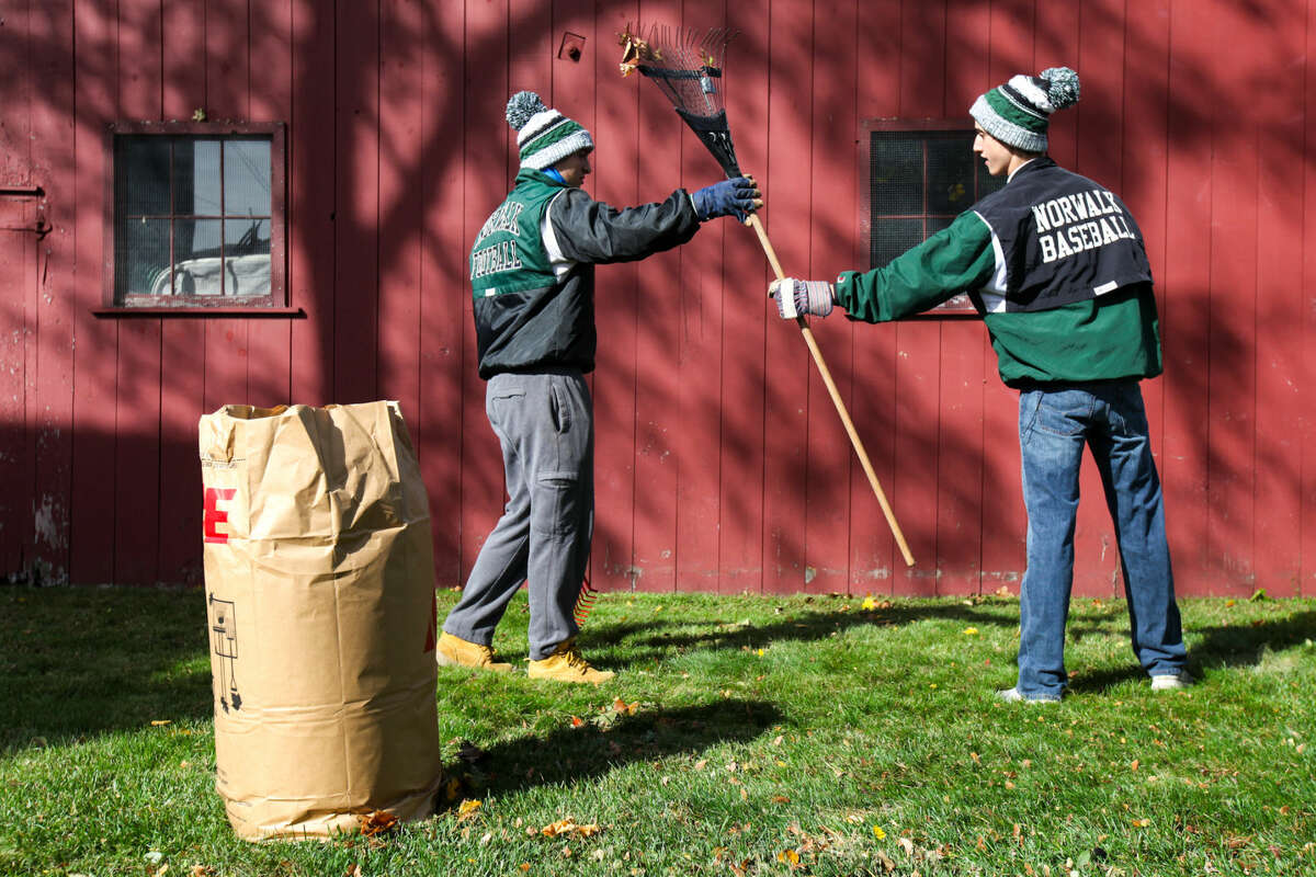 Hour photo/Chris Palermo Yard waste pick up schedule announced.