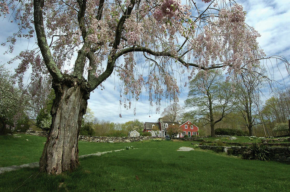 A Weeping Cherry tree frames the Visitor's Center at Weir Farm National Historic Site.