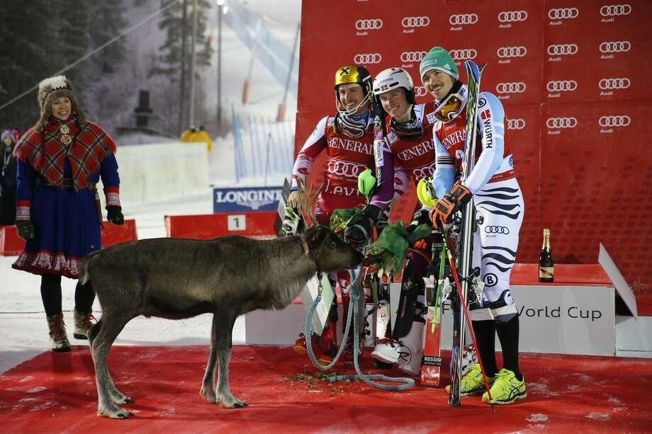 Henrik Kristoffersen, center, winner of an alpine ski, men's World Cup slalom race, flanked by second placed Marcel Hirscher, left, and third placed Felix Neureuther, poses next to a reindeer in Levi, Finland, Sunday, Nov. 16, 2014. (AP Photo/Giovanni Auletta)