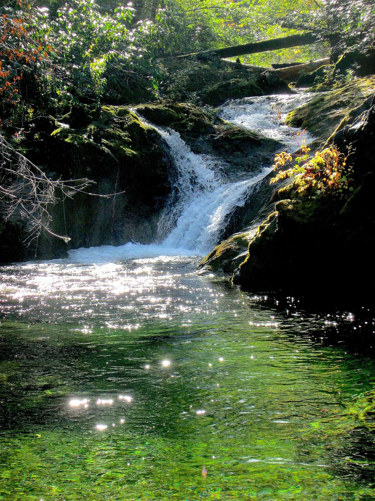 Buck Creek pours crystal-pure freshwater as a tributary into the Smith River on the South Kelsey Trail in the Smith River National Recreation Area, located in Northern California