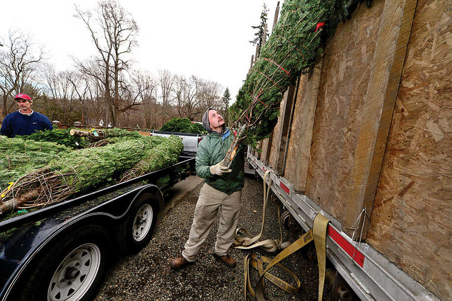 Workers with Ambler Farm, Lee Horticultural Services, Tall Trees Landscaping, Earthscapes and Wilton Lawn Services, including Earthscapes Wayne Sterry, unload nearly 400 Christmas trees and over 250 wreaths for the farm's annual Christmas tree sale.