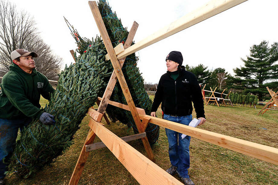 Workers with Ambler Farm, Lee Horticultural Services, Tall Trees Landscaping, Earthscapes and Wilton Lawn Services, including Tall Trees owner Emily Humiston, right, unload nearly 400 Christmas trees and over 250 wreaths for the farm's annual Christmas tree sale.