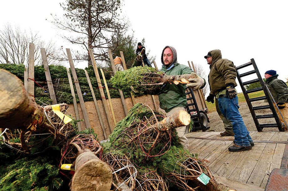 Workers with Ambler Farm, Lee Horticultural Services, Tall Trees Landscaping, Earthscapes and Wilton Lawn Services, including Earthscapes' Wayne Sterry, unload nearly 400 Christmas trees and over 250 wreaths for the farm's annual Christmas tree sale.