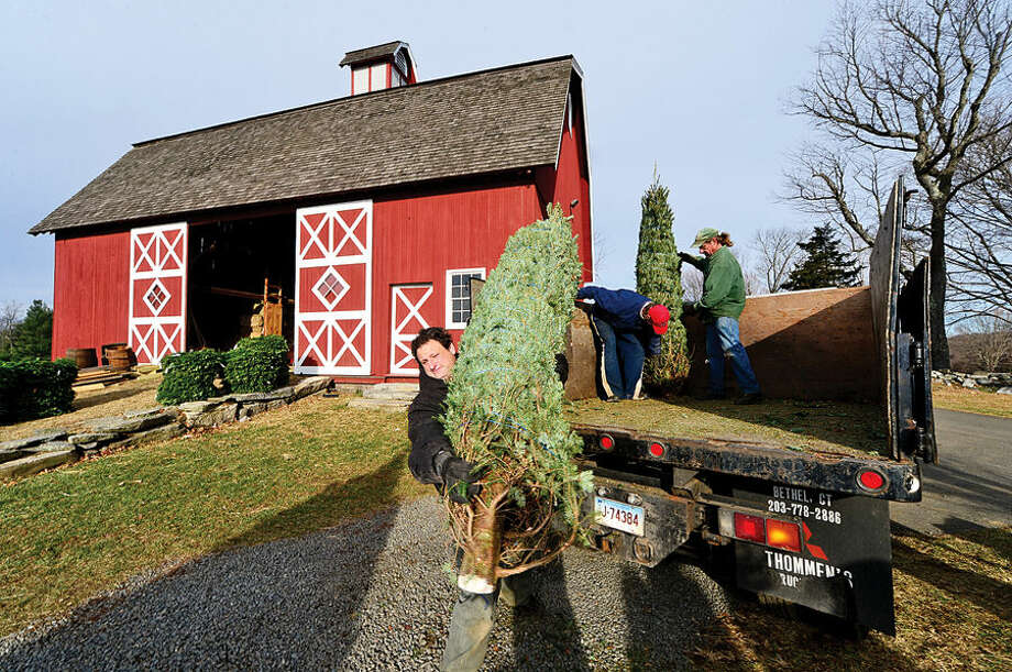 Workers with Ambler Farm, Lee Horticultural Services, Tall Trees Landscaping, Earthscapes and Wilton Lawn Services, including Ambler Director of Agricultural Jonathan KIrschner, unload nearly 400 Christmas trees and over 250 wreaths for the farm's annual Christmas tree sale.