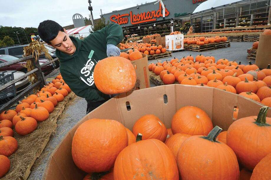 Hour Photo/Alex von Kleydorff At Stew Leonard's, Joey Farraro works at setting out just some of the hundreds of pumpkins that arrive at the garden center for the fall season.