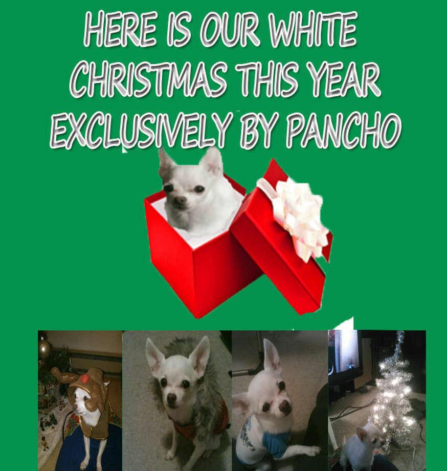 Pancho White Xmas