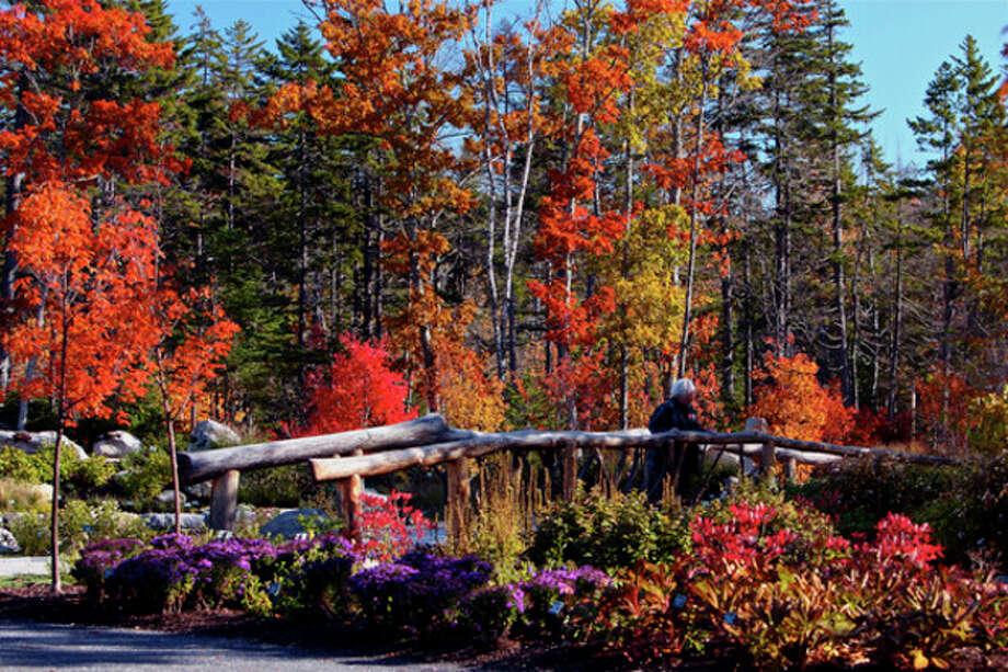 / Coastal Maine Botanical Gardens