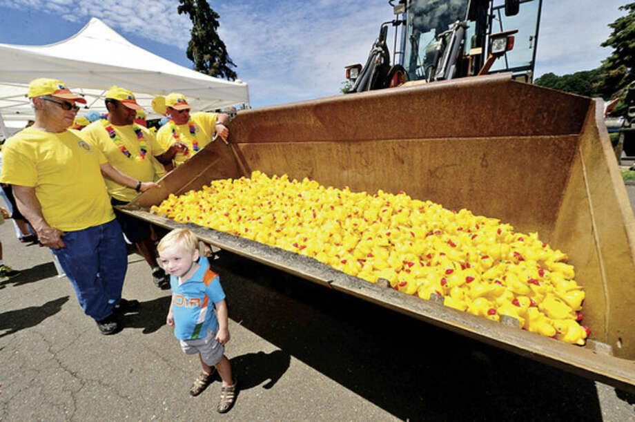 Hour file photo / Erik TrautmannJames Scmidt, 2, poses near 2,500 rubber duckie entrants in the Westport Sunrise Rotary's 2014 Great Duck Race event at the Saugatuck River.