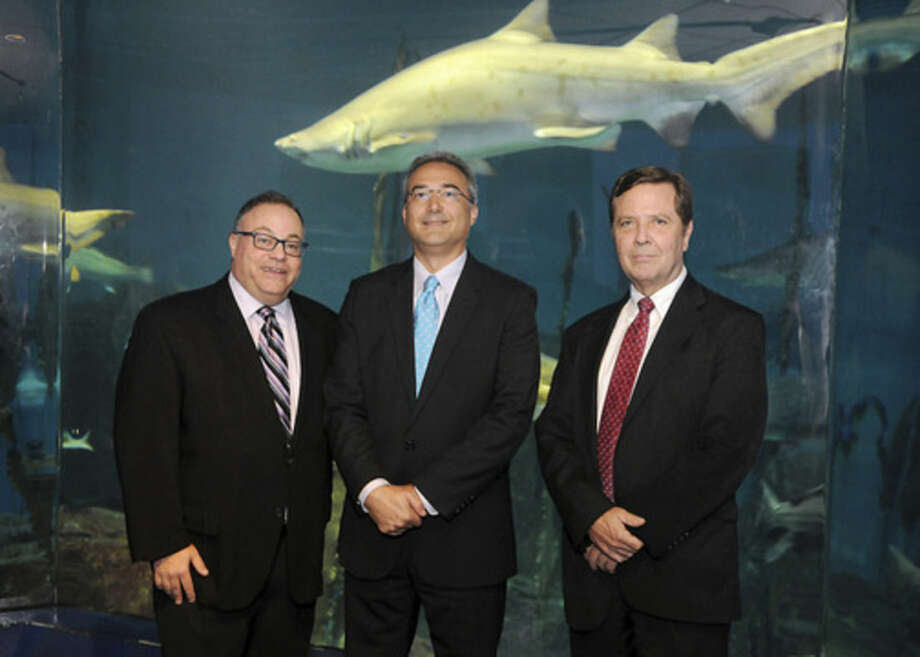 Photo by Michael ThutGoldman, Gruder & Woods principals Michael Goldman, Ken Gruder and Matt Woods in front of the shark tank at the Maritime Aquarium at Norwalk during the firm's 20th anniversary celebration on Thursday.