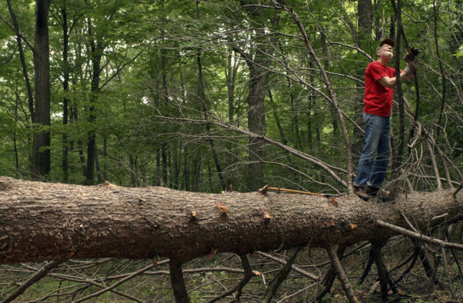 FILE - In this Tuesday, July 27, 2004 file photo, Pete Seeger, 85 removes a limb from a dead hemlock tree that he and his neighbor felled on his property in Beacon, N.Y. Seeger died on Monday Jan. 27, 2014, at the age of 94. (AP Photo/Jim McKnight)