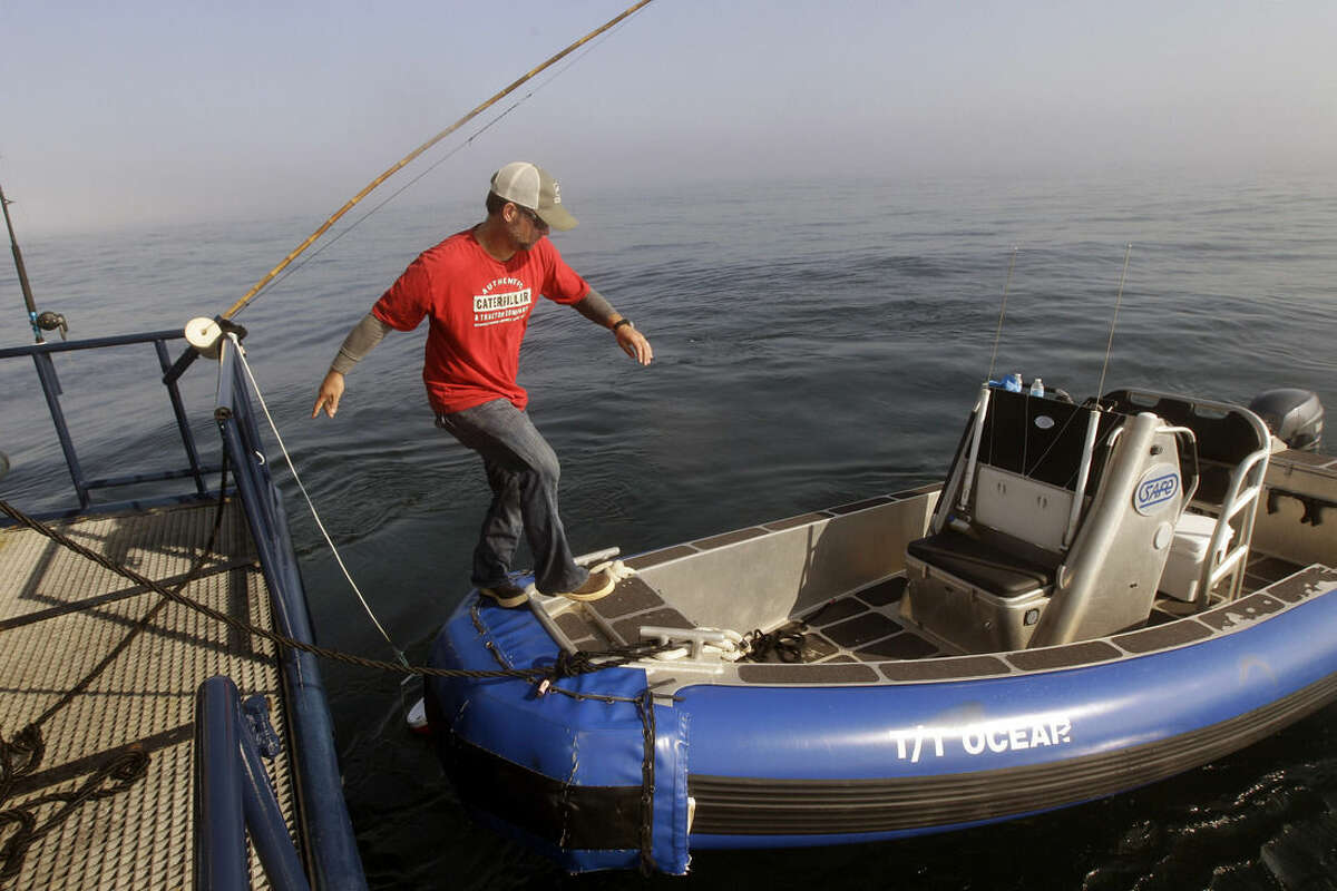 FILE - In this Sept. 7, 2012 file photo, Ocearch expedition leader Chris Fischer steps onto a small sport fishing boat to check chum locations for signs of great white shark activity in the Atlantic Ocean off the coast of Chatham, Mass. The Ocearch team baits the fish and leads them onto a lift, tagging and taking blood, tissue and semen samples up close from the worldís most feared predator. The real-time satellite tag tracks the shark each time its dorsal fin breaks the surface, plotting its location on a map. (AP Photo/Stephan Savoia, File)