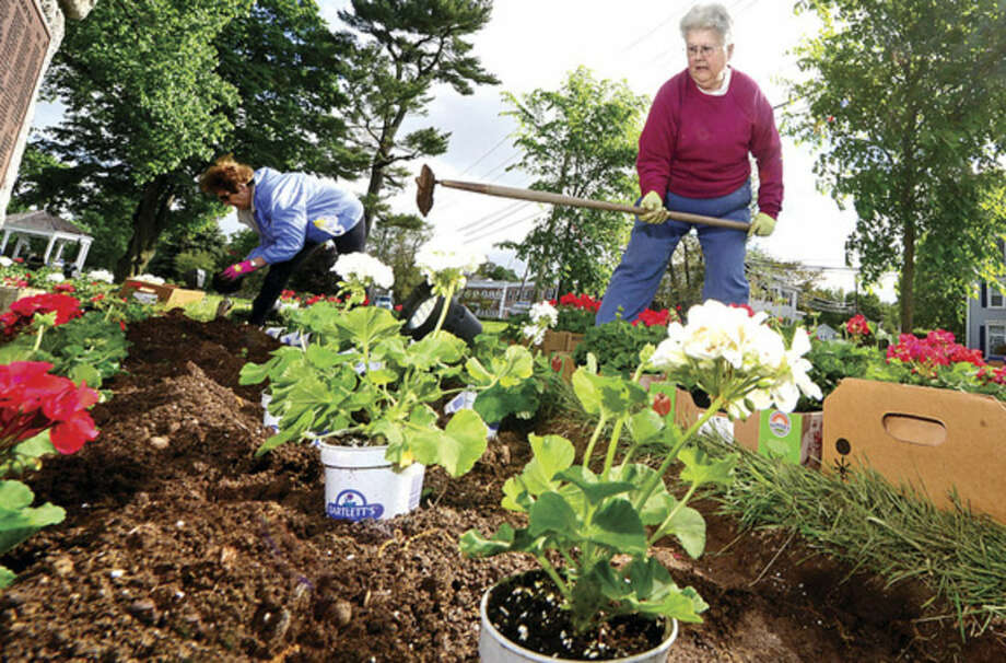 Hour photo / Erik Trautmann Norwalk Garden Club member Noreen Normand participates in the annual planting of flowers on The Norwalk Green Wednesday in partnership with the First District Water Department.