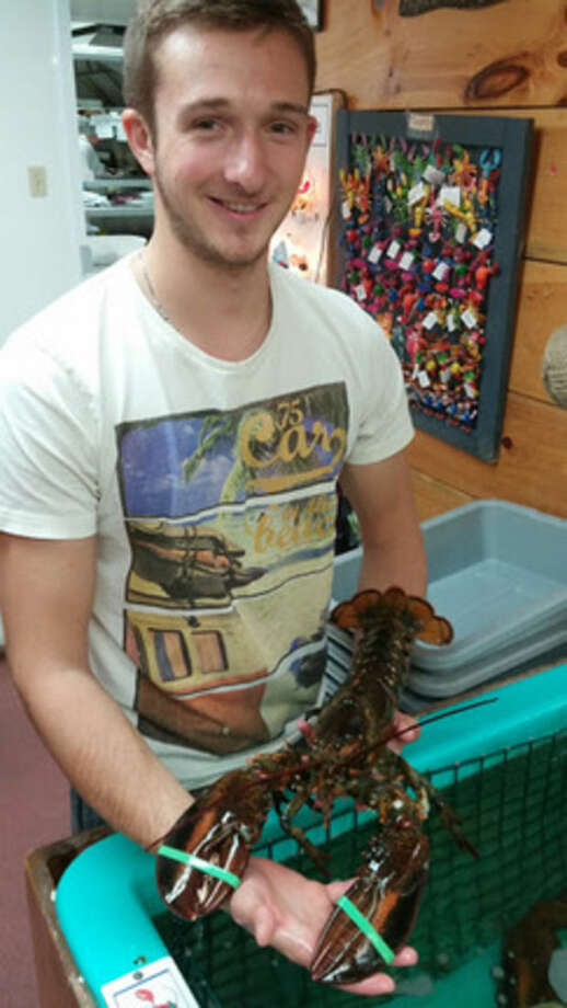 Photo by Frank WhitmanPick your lobster at Hall's Harbour.