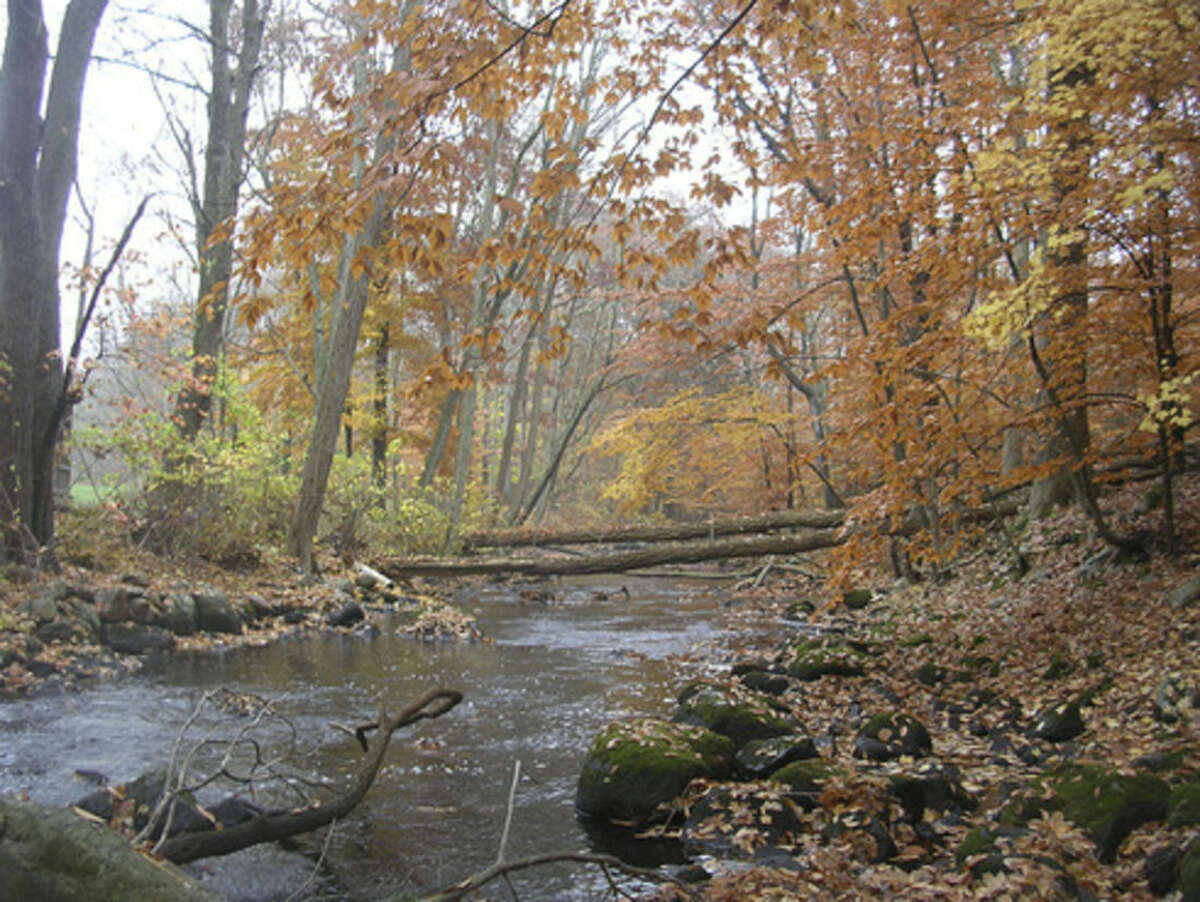Photo by Rob McWilliams Mianus River Park in Stamford.