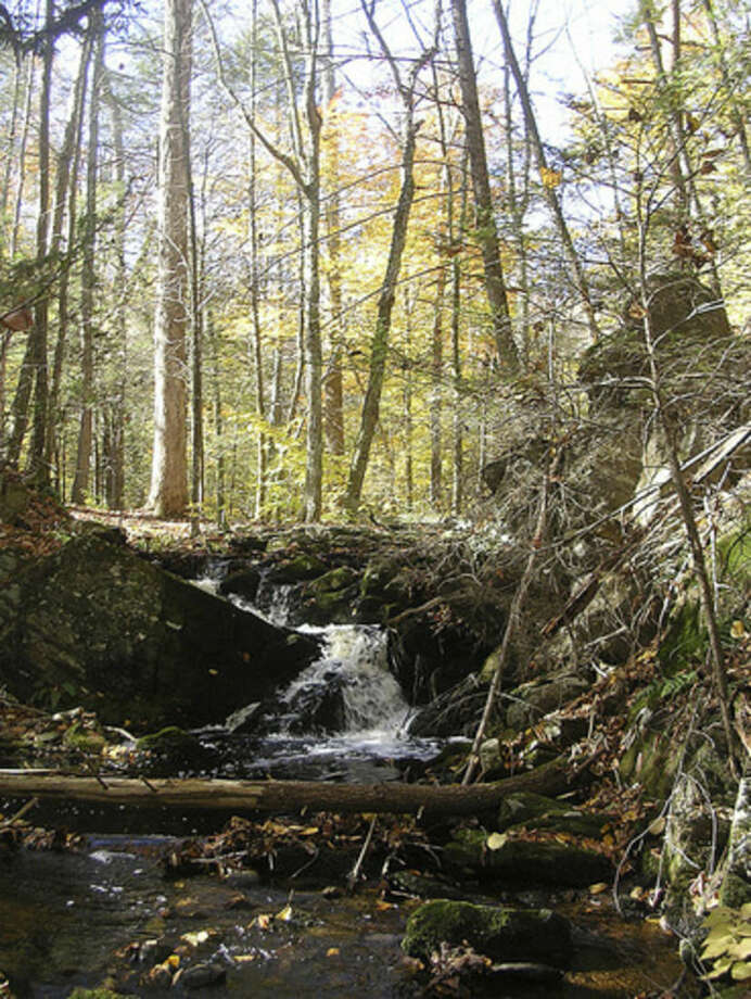 Photo by Rob McWilliamsCascade beside the Old Growth Forest Trail at Mianus.