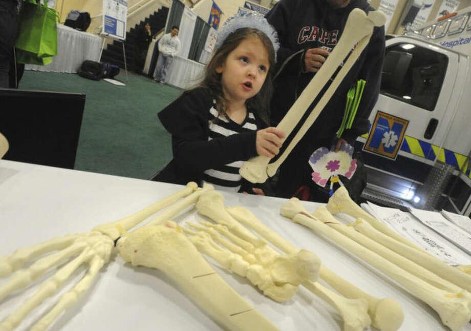 Hour photo/Matthew VinciNoelle Burgess 5, examines various human bones at the Norwalk Hospital physician's table at last year's Norwalk Hospital Kids Fest.