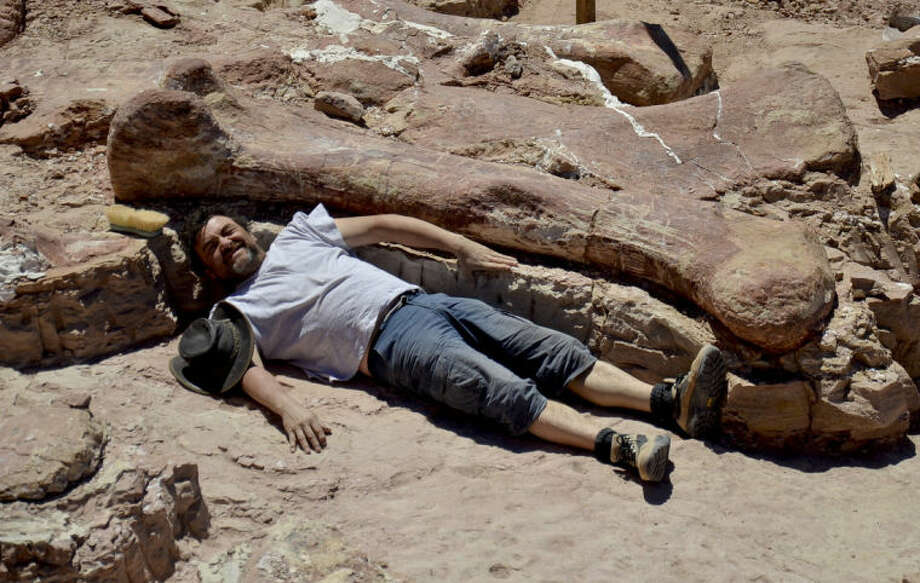 In this January 2014 photo released on Saturday, May 17, 2014 by the Museo Paletontológico Egidio Feruglio, Spanish paleontologist Jose Ignacio Canudo lies alongside a sauropod dinosaur femur, believed to be the largest in the world, in Trelew, Argentina. Paleontologists from the Museo Paletontológico Egidio Feruglio, announced Friday, May 16, 201, the discovery of the fossil remains of the sauropod dinosaur near Trelew. (AP Photo/Museo Paletontológico Egidio Feruglio)